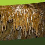 Barlanglátogatás a Súgó-barlangba (Súgó-barlang, fizetős)